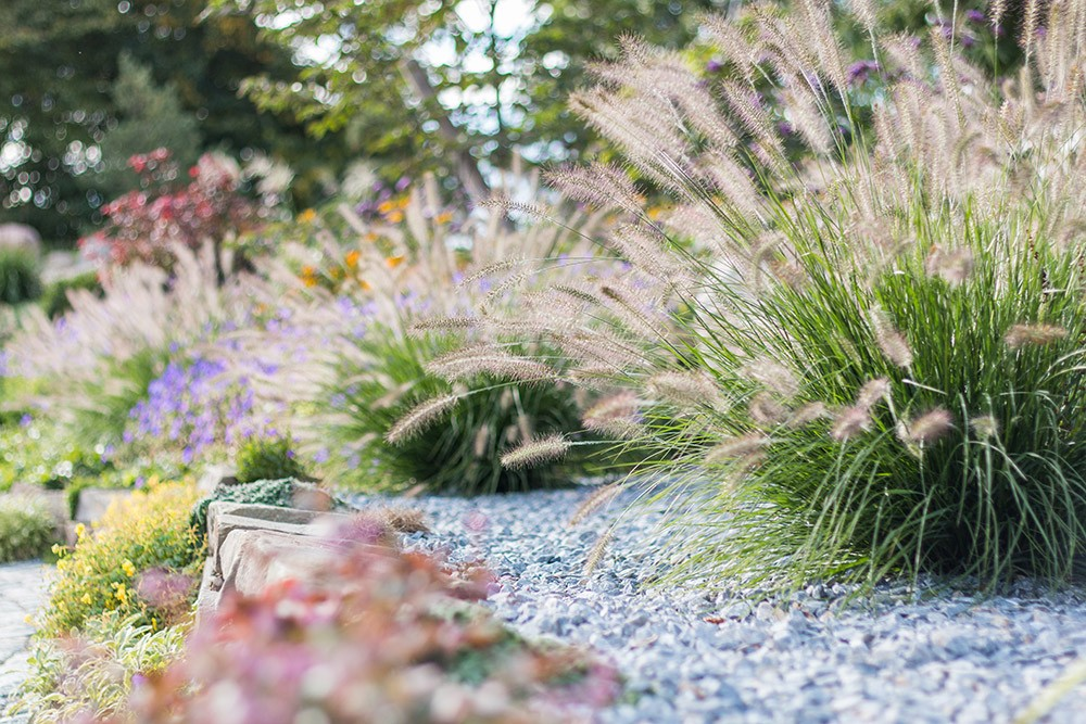 Projekt für Zanders Gartenbau
